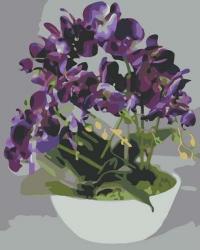 Рисование по номерам (на холсте) 40х50 0380HS Фиолетовая орхидея