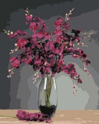 Рисование по номерам (на холсте) 40х50 1052HS Орхидея