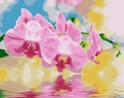 Рисование по номерам (на холсте) 40х50 1141HS Веточка орхидеи