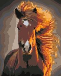Рисование по номерам (на холсте) 40х50 0075HS Златогривый конь