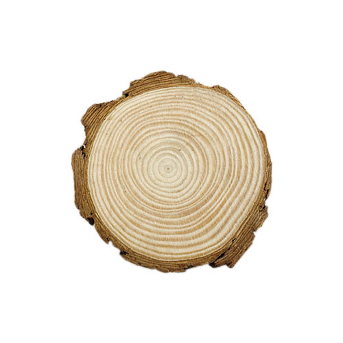 Спил дерева для декора №25-176 1/10 шт